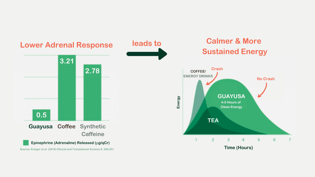 diagram about guayusa clean energy